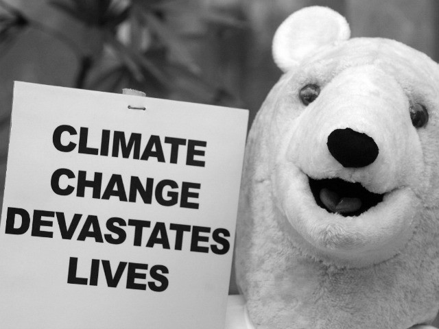 This polar bear must be an environmentalist. Notice his message and his smile.